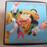 30周年ディズニーお土産_チョコクランチキュービック1991